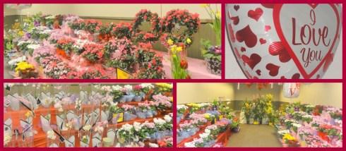 Valentine day in a Safeway
